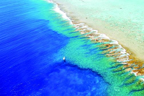 Foto: Pacific Beachcomber