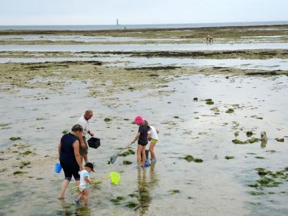Família pescando frutas do mar na areia